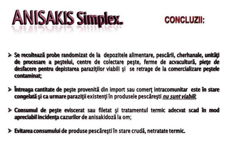 ANISAKIS SPP (14)